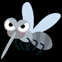 bug_ka - コピー